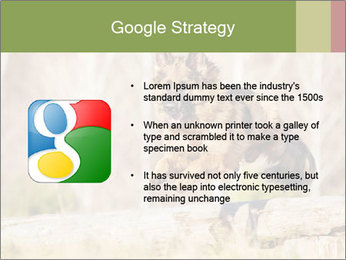 0000077061 PowerPoint Templates - Slide 10