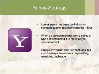 0000077061 PowerPoint Template - Slide 11