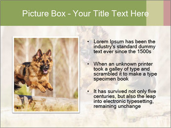 0000077061 PowerPoint Templates - Slide 13