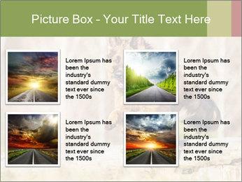 0000077061 PowerPoint Templates - Slide 14