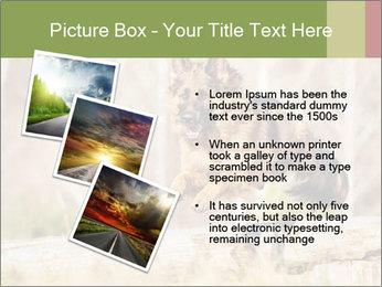 0000077061 PowerPoint Template - Slide 17