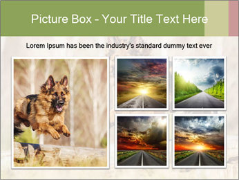 0000077061 PowerPoint Templates - Slide 19