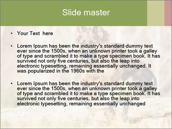 0000077061 PowerPoint Templates - Slide 2
