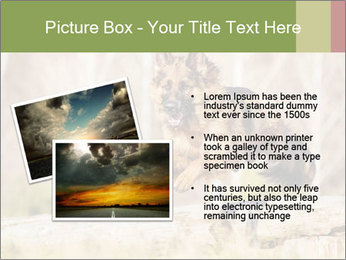 0000077061 PowerPoint Template - Slide 20