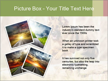 0000077061 PowerPoint Templates - Slide 23