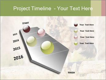 0000077061 PowerPoint Template - Slide 26