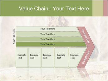 0000077061 PowerPoint Template - Slide 27