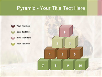 0000077061 PowerPoint Templates - Slide 31