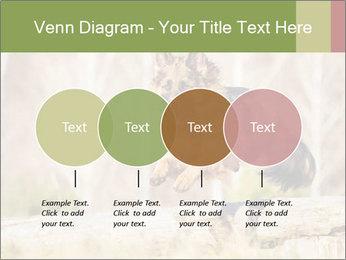 0000077061 PowerPoint Templates - Slide 32