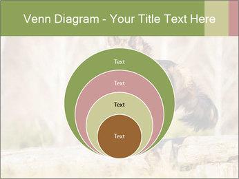0000077061 PowerPoint Templates - Slide 34