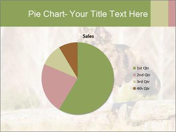 0000077061 PowerPoint Templates - Slide 36