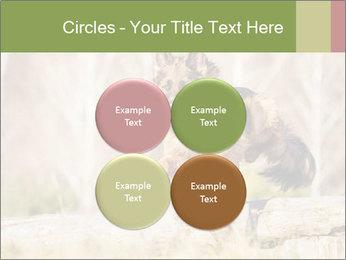 0000077061 PowerPoint Templates - Slide 38