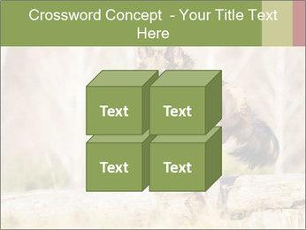 0000077061 PowerPoint Templates - Slide 39