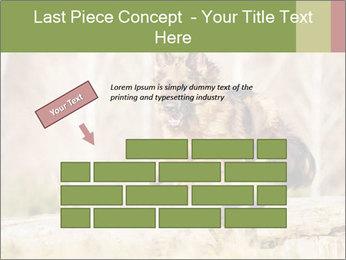 0000077061 PowerPoint Templates - Slide 46