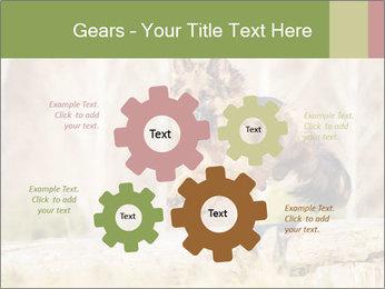 0000077061 PowerPoint Templates - Slide 47