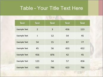 0000077061 PowerPoint Template - Slide 55