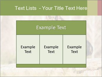 0000077061 PowerPoint Template - Slide 59