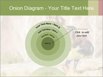 0000077061 PowerPoint Template - Slide 61