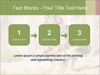 0000077061 PowerPoint Template - Slide 71