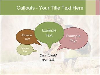 0000077061 PowerPoint Template - Slide 73