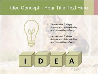 0000077061 PowerPoint Template - Slide 80