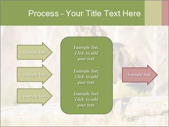 0000077061 PowerPoint Template - Slide 85