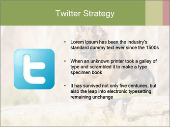 0000077061 PowerPoint Templates - Slide 9