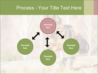 0000077061 PowerPoint Templates - Slide 91