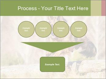 0000077061 PowerPoint Template - Slide 93