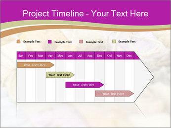 0000077062 PowerPoint Templates - Slide 25