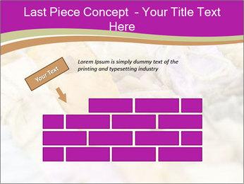 0000077062 PowerPoint Templates - Slide 46