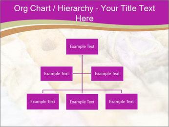 0000077062 PowerPoint Templates - Slide 66