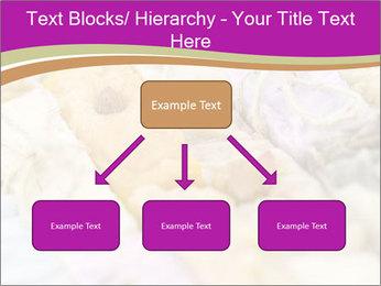 0000077062 PowerPoint Templates - Slide 69