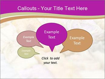 0000077062 PowerPoint Templates - Slide 73