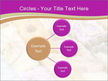 0000077062 PowerPoint Templates - Slide 79