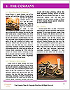 0000077062 Word Template - Page 3