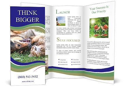 0000077075 Brochure Template
