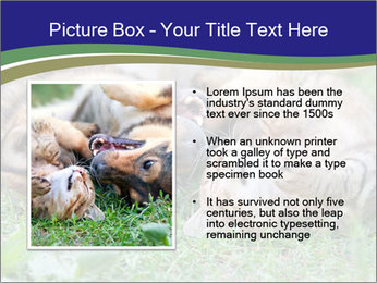 0000077075 PowerPoint Templates - Slide 13