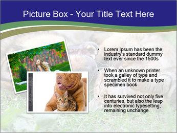 0000077075 PowerPoint Templates - Slide 20