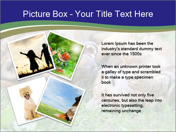 0000077075 PowerPoint Templates - Slide 23