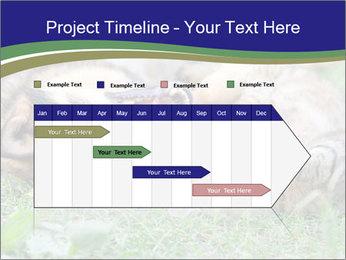 0000077075 PowerPoint Templates - Slide 25