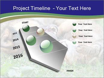 0000077075 PowerPoint Templates - Slide 26