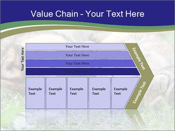 0000077075 PowerPoint Template - Slide 27