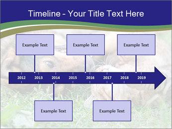 0000077075 PowerPoint Templates - Slide 28