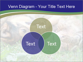 0000077075 PowerPoint Templates - Slide 33