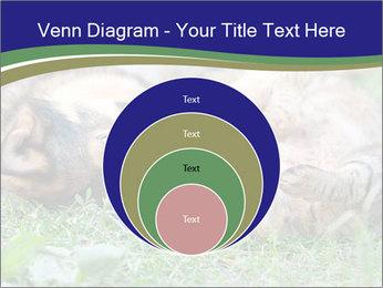 0000077075 PowerPoint Templates - Slide 34