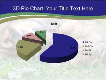 0000077075 PowerPoint Templates - Slide 35