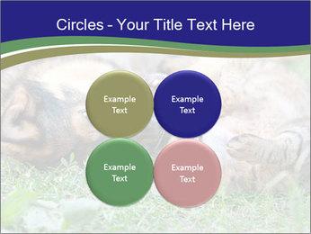 0000077075 PowerPoint Templates - Slide 38