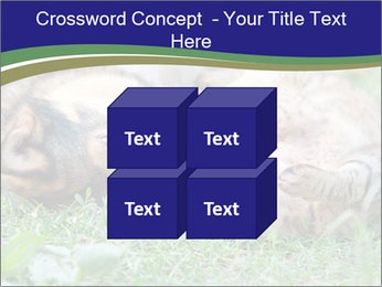 0000077075 PowerPoint Templates - Slide 39