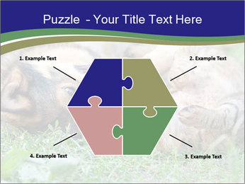 0000077075 PowerPoint Template - Slide 40
